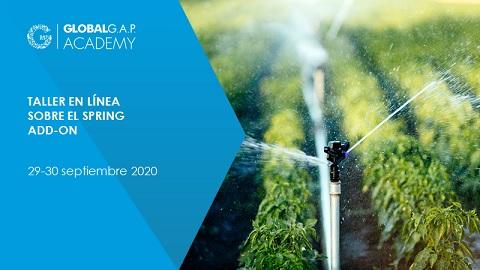29-30 Septiembre 2020 | Taller sobre el SPRING Add-On | En línea (42-350)