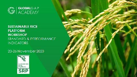 23-26 November 2020 | SRP Standard and Performance Indicators Workshop | Online (57-259)