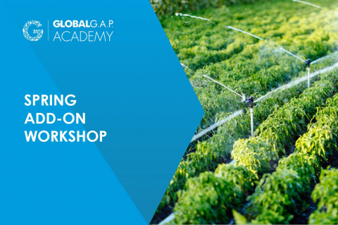 13-14 May 2021 | Online SPRING Add-on Workshop | English (012-492)