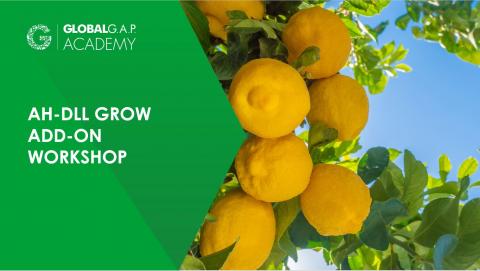 28 July 2021 | AH-DLL GROW Add-on Workshop | Online (050-678)