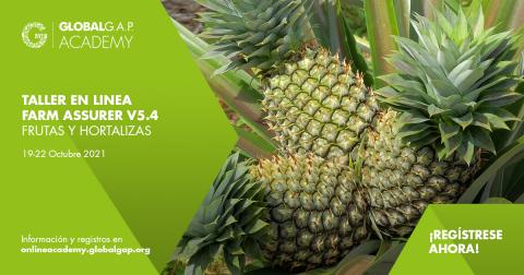19-22 Octubre 2021 | Online Farm Assurer Workshop (V5.4 F&V) | Spanish (080-702)