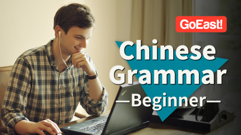 Essential Chinese Grammar for Beginner (HSK1) (HSK1G)