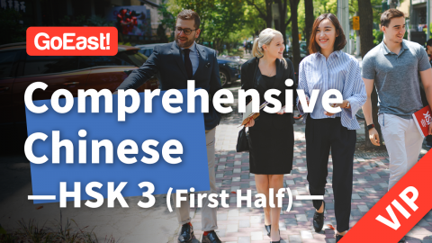 Elementary Chinese Course HSK3 - First Half (VIP Class) (HSK3上-VIP)
