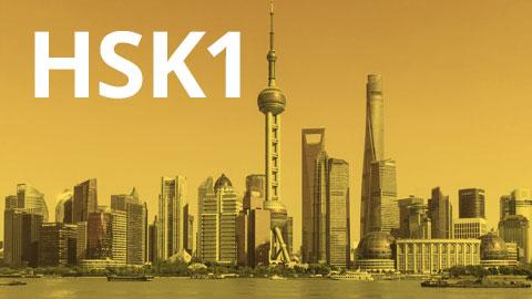 HSK1 (Self-Study) (HSK1)