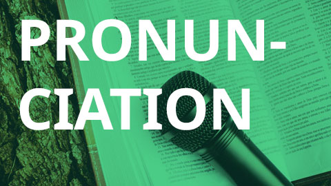 Pronunciation Course for Beginners (Self-Study Class) (DCB)