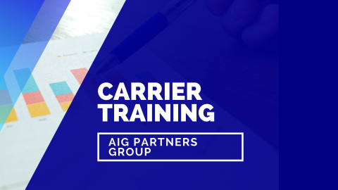 AIG Partners Group
