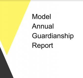 Annual Report Model Discussion