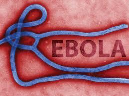 Ebola (ML-MABW-07)