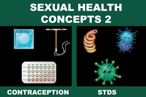 Sexual Health Concepts 2