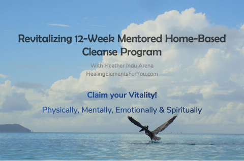 Revitalizing 12-Week Mentored Home-Based Cleanse Program (C12)