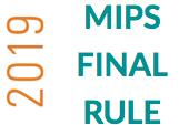 Improvement Activities (2019) (MIPS19-203)