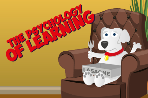 The Psychology of Learning (LNE01)