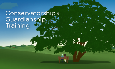 MN Conservatorship & Guardianship Training