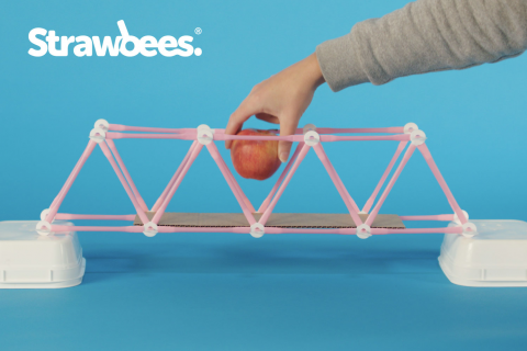 Bridges(Strawbees)