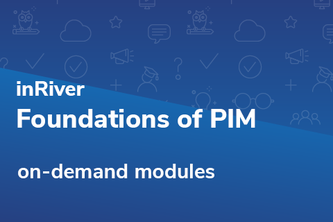 Foundations of PIM (Online/Base)