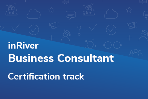 Business Consultant Certification Track (BCCert2021)