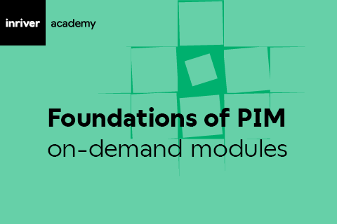 Foundations of PIM (Online/Base)