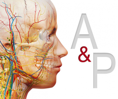 Introduction to Human Anatomy & Physiology for Homeopaths (APH)