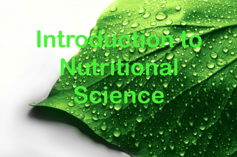 Introduction to Nutritional Sciences for Integrative Healthcare Practitioners (NUTINTROENG-001)
