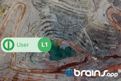 brains.app Usuario - Nivel 1