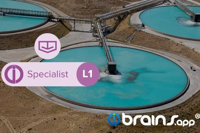 brains.app Especialista - Espesador - Nivel  1
