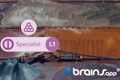 brains.app Specialist - Stockpile - Level 1