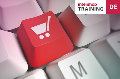Wie man B2B Shops mit der Intershop Commerce Suite verwaltet (d200C)