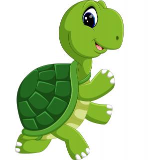Breng processen in kaart met schildpaddiagram (TOO-20-002)