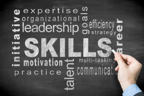 Skillsets for Success in Work, School and Life (J2027)