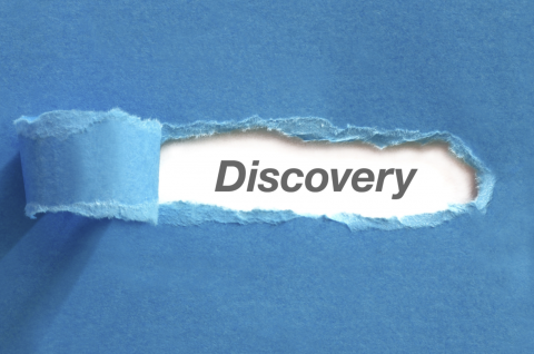 Diving into the Discovery Experience (I5040)