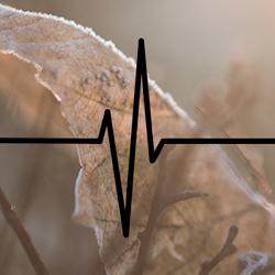 Nettkurs EKG (EKG01)