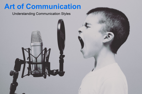 The Art of Communication: Understanding Communication Styles (PJM-COM1)