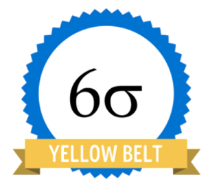 FRENCH Lean Six Sigma Yellow Belt On-Demand Certification Course
