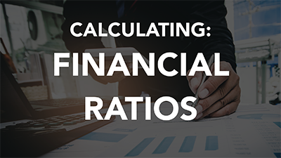 Financial Ratios (LCI1113)