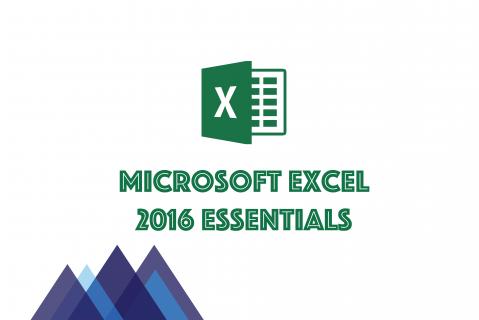 LM102 Microsoft Excel 2016 Essentials (LM102)