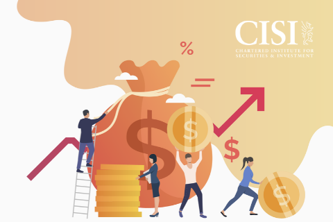 CISI International Introduction to Investment (CISIIIIH120)