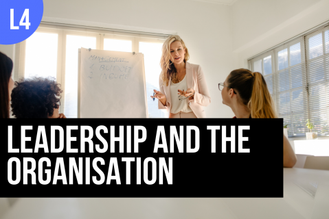 BTBUS402: Leadership and the Organisation (BTBUS402)