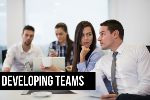 BTBUS406: Developing Teams (BTBUS406)