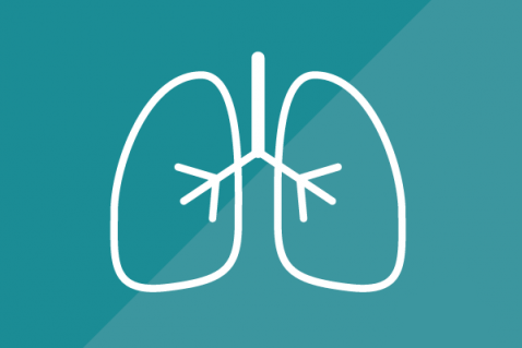 El Aparato Respiratorio (F001)