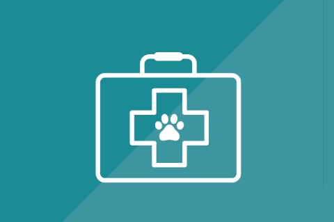 Medicamentos para Mascotas (GT004)