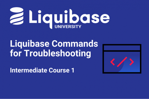 Liquibase Commands for Troubleshooting (LB201)