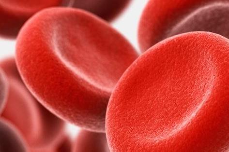 Héma-Québec avec vous pour vaincre les cancers du sang