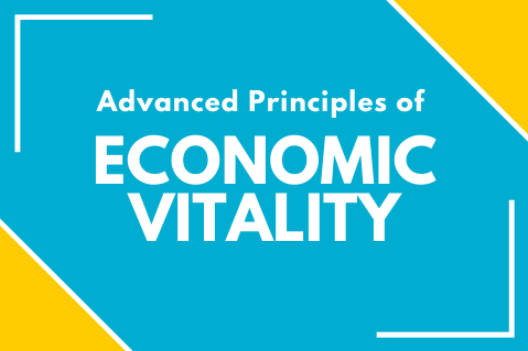 Advanced Principles of Economic Vitality (APEV21)
