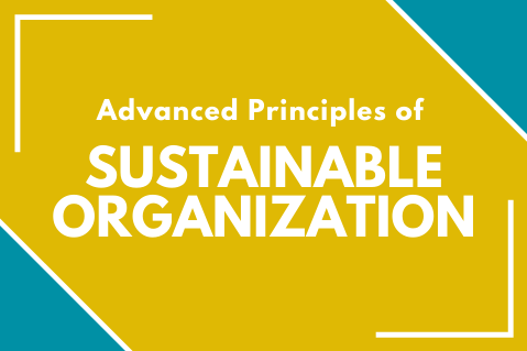 Advanced Principles of Sustainable Organization