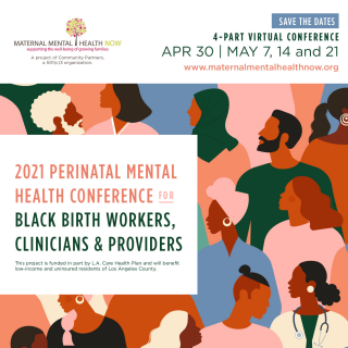 Perinatal Mental Health for Black Birthworkers, Clinicians, and Providers