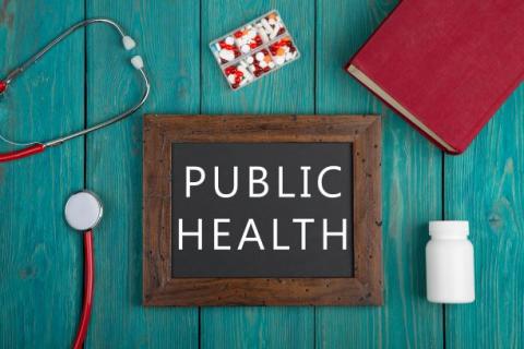Introduction to Public Health (CC1.d)