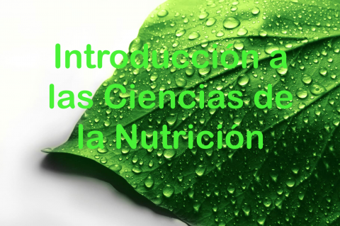 Curso de Introducción a las Ciencias de la Nutrición para Profesionales de la Salud Integrativa (NUTINTROESP-001)