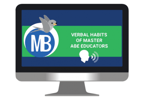 Verbal Habits of Master Educators