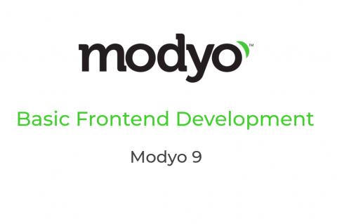 M301 - Basic Frontend Development