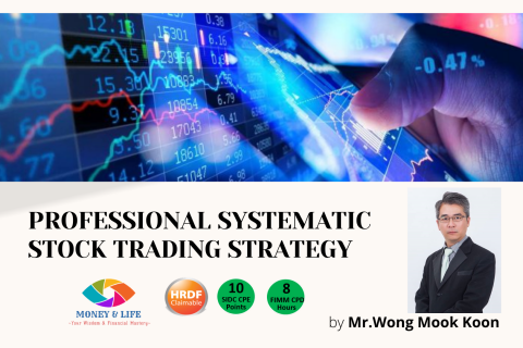 Professional Systematic Stock Trading Strategy